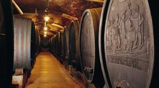Ptuj Wine Cellar