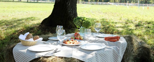 Country Style Picnic Lunch in Slovenia