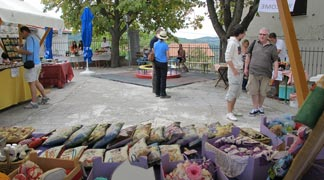 Portoroz Piran DMC - Piran Farmers Market and Village life