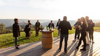 Best of Slovenia Education Trip - Wine Tasting Trip