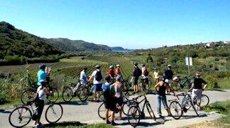 Kranjska Gora DMC - Biking tours
